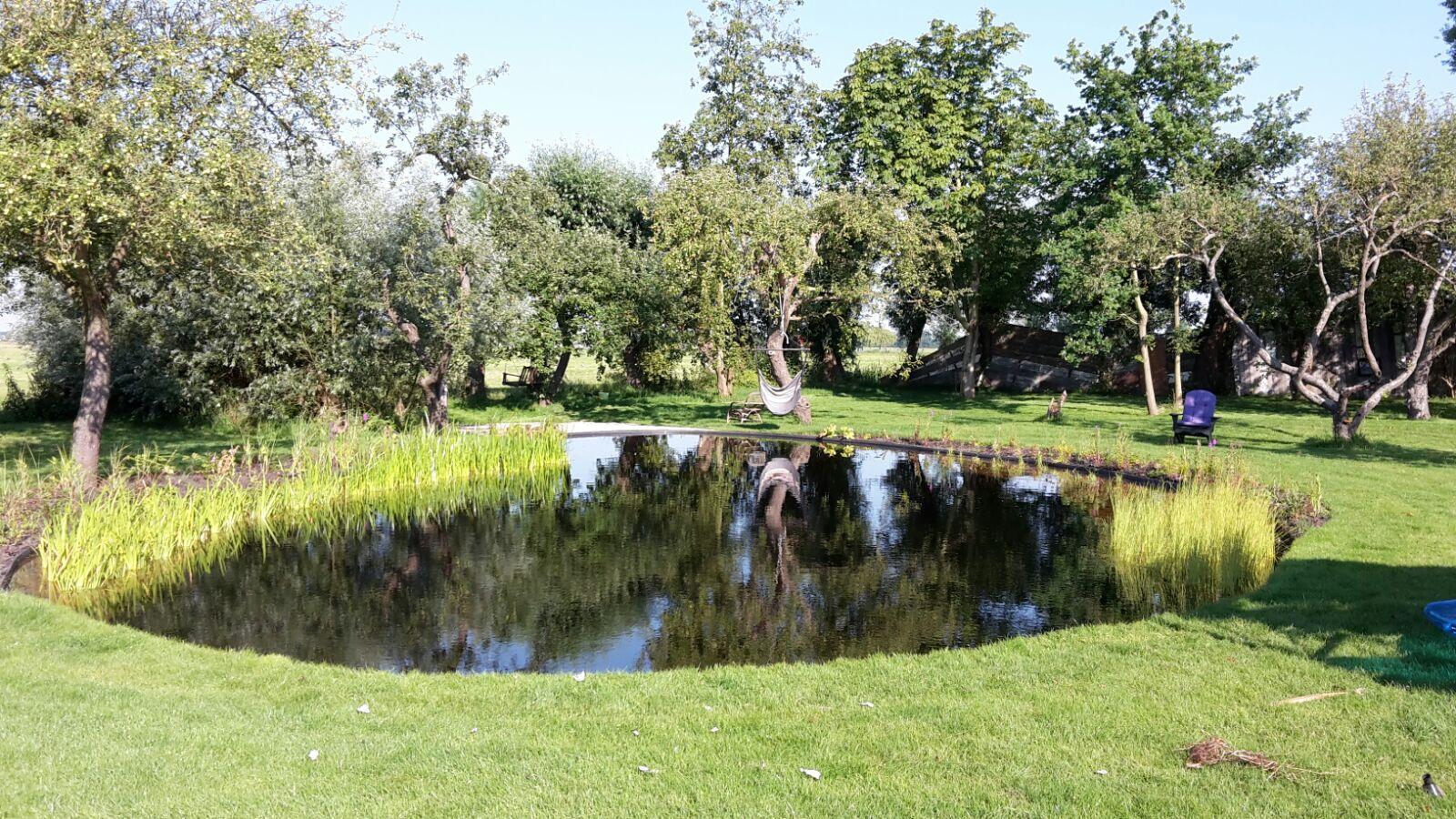 Welkom bij koi en vijvercentrum noord holland for Zwemvijver benodigdheden